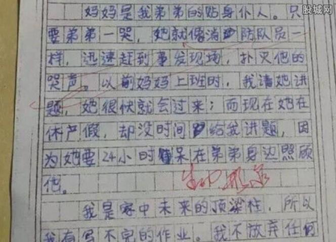 男孩写二胎作文