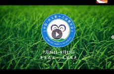 中国尚义第十三届赛羊会宣传片