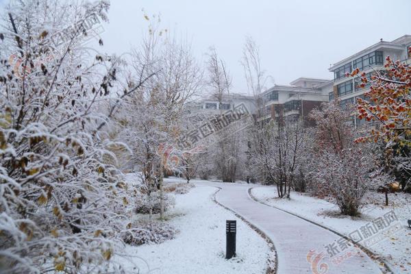 张家口市迎来今秋初雪 崇礼雪景。 施佳生 摄