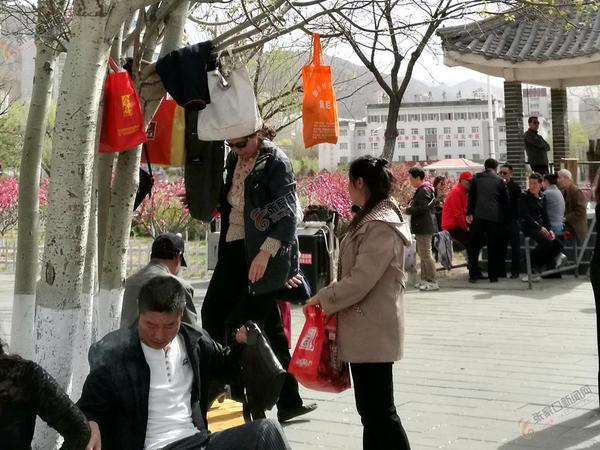 踏青出游,请用文明守护春色 一些市民将手提袋、衣服等挂在树杈上。