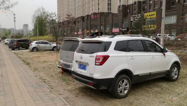 绿地成停车场待治理 机动车车主将车辆停放在绿地上。 赵晓刚 摄