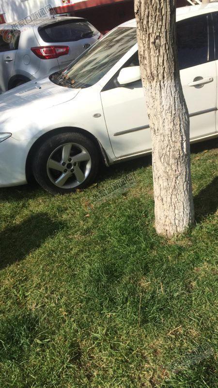 """草坪绿地""""很受伤"""" 停在草坪里的私家车。"""