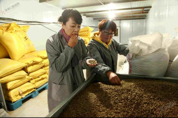 刘一牵头养兔要助5000农户脱贫 刘一(左一)严把饲料质量关。