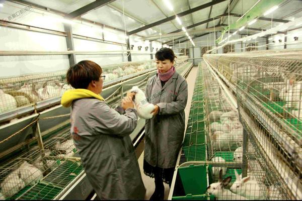 刘一牵头养兔要助5000农户脱贫 刘一(右一)检查养殖情况。 郭俊和 摄