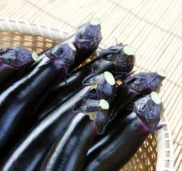 糖尿病人吃茄子可以降血糖?营养专家:虽不能,但这样吃对身体好