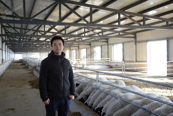 """返乡青年兰进京的""""致富经"""" 兰进京在养殖场内。"""