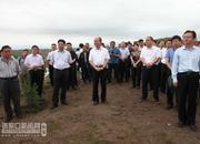 全市雨季造林现场会在尚义召开