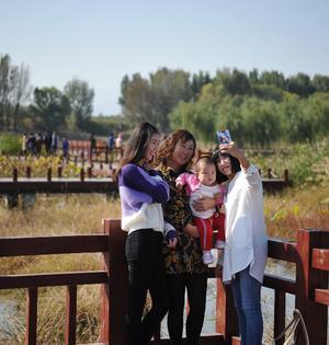 湿地公园迎游客