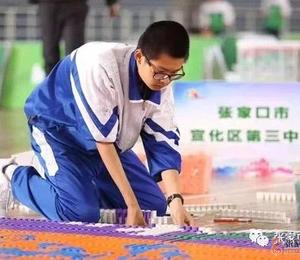 京张两地联合举办迎冬奥青少年多米诺大赛