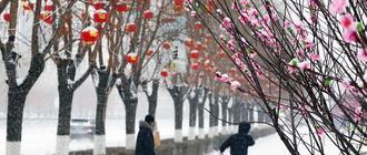 冬奥之城春雪纷飞