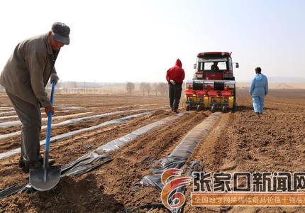 张家口塞北管理区:春耕播种进行时