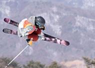 冬奥会比赛项目——自由式滑雪