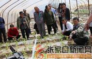 张家口崇礼区组织开展农村贫困残疾人实用技术和青壮年扫盲培训