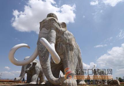 第四届泥河湾公众考古活动在阳原举行