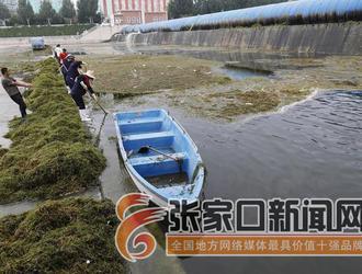 清理水草美环境