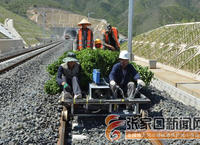 筑鐵路生態綠化長廊