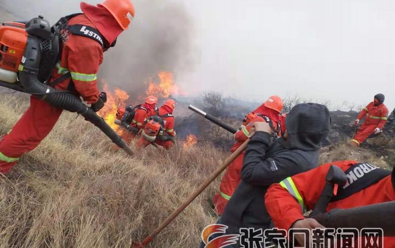 下花園森林消防大隊:生命綻放白桃花