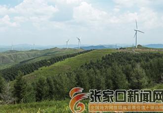沽源:打造坝上绿色生态屏障