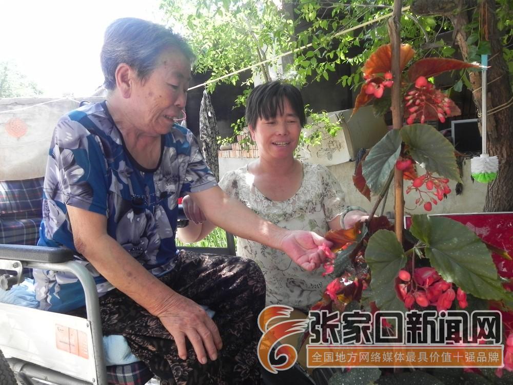 【身边好人】陈翠花:好家风是一种力量 陈翠花陪着婆婆在院中赏花。