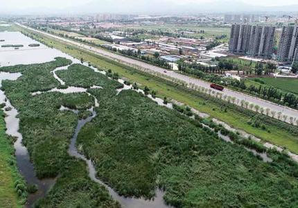 宣化:治理洋河湿地打造生态长廊
