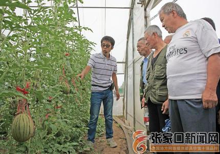 学习先进农业经验