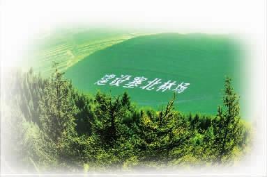【再出发 用奋斗共绘山川画卷】昔日荒原见证绿水青山之变