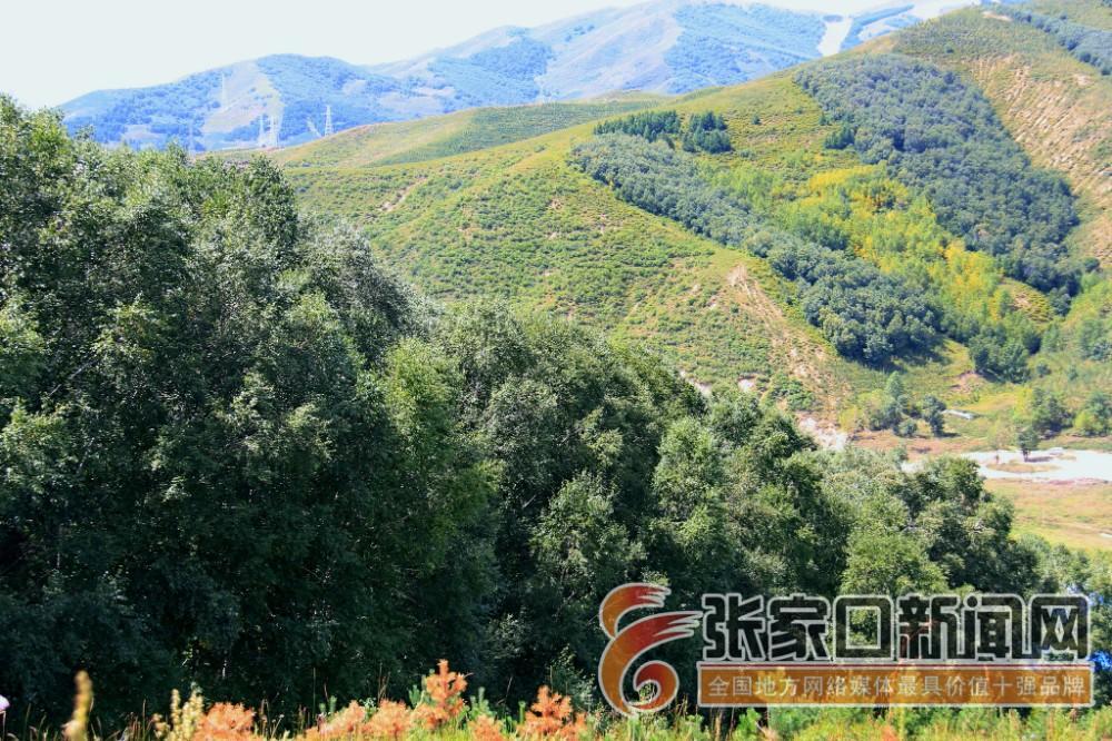 杨建忠:冬奥赛事核心区植绿人 植绿后的崇礼。 郭俊和摄