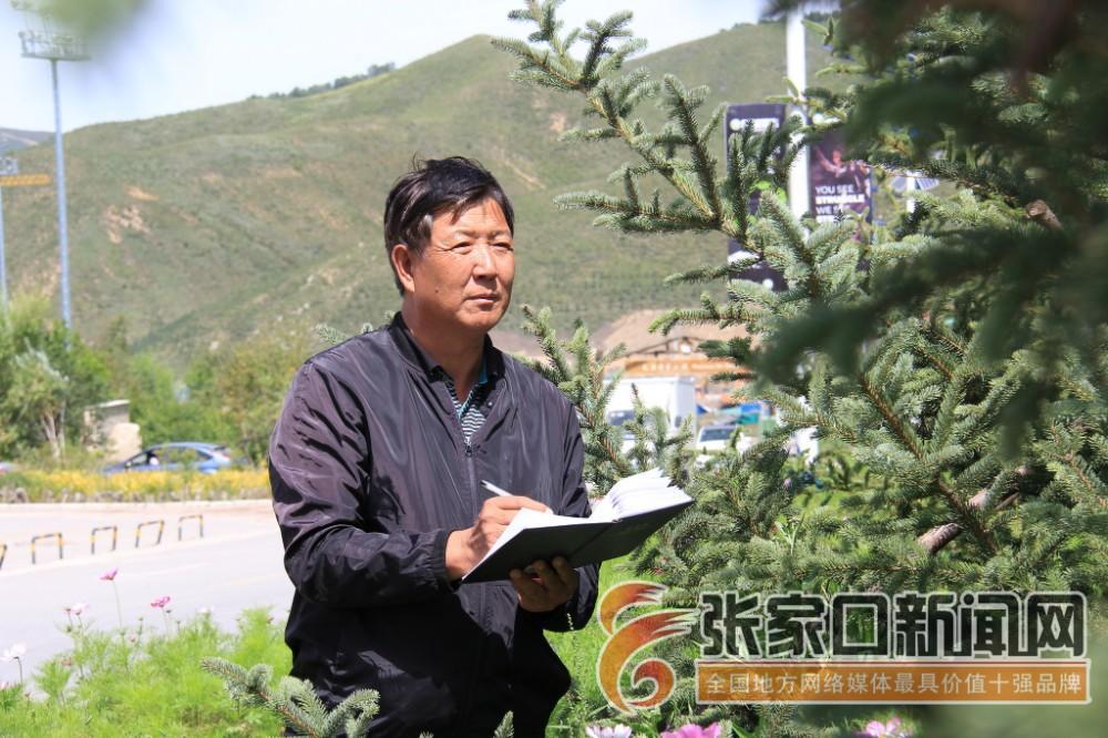 杨建忠:冬奥赛事核心区植绿人 杨建忠在绿化施工现场。 郭俊和摄