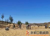 [我和我的祖国·走近美丽乡村] 下马圈乡 把小杂粮做成特色产业