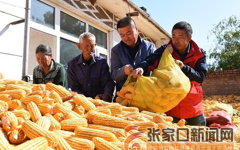 宣化:三級干部駐村夯實脫貧基礎