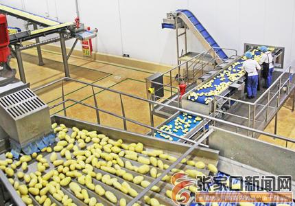 馬鈴薯高新技術產業平臺