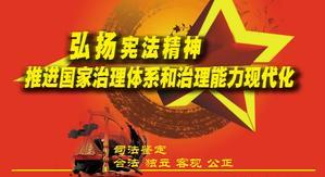 弘揚憲法精神 推進國家治理體系和法治能力現代化