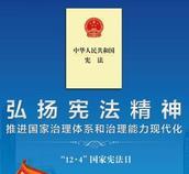 宪法进网站
