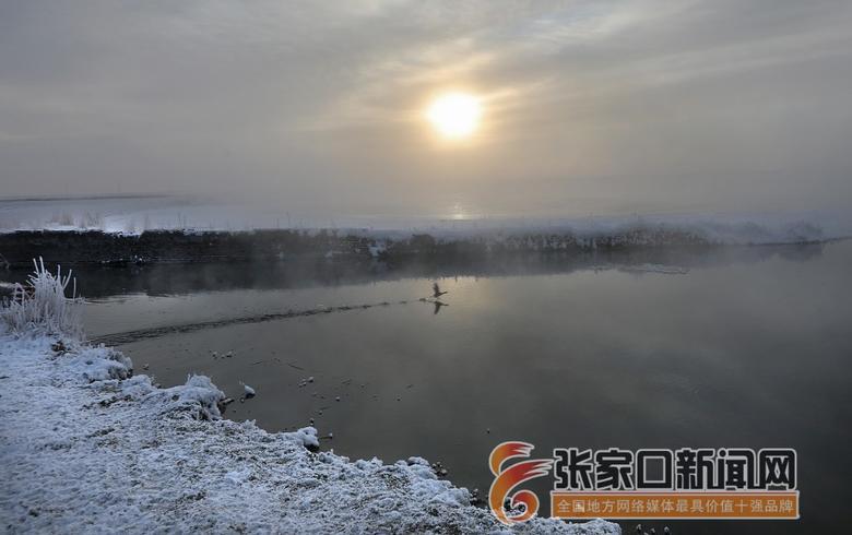 察北:冬日羅平湖美不勝收