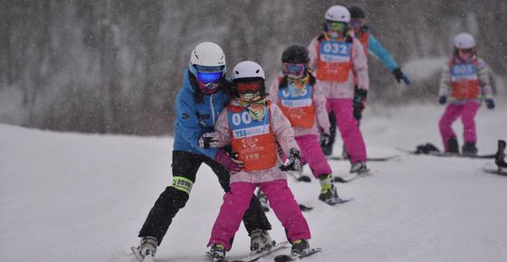 崇禮高質量推進冬奧會籌辦工作