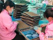 郭磊莊鎮:疫情防控與春耕生產兩不誤