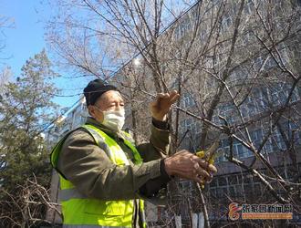 保護生態環境共建綠色張垣 修剪樹枝美化景觀