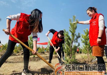 张北拉开全县造林绿化工作序幕
