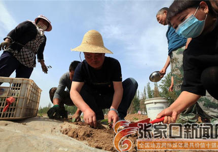 田園勞作體驗活動助力村民增收