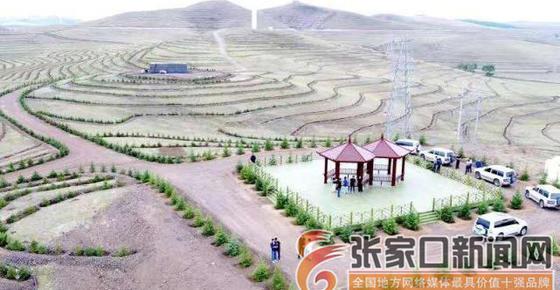 為引冬奧紅利儲備綠色能量沽源縣二秦高速廊道綠化穩步推進