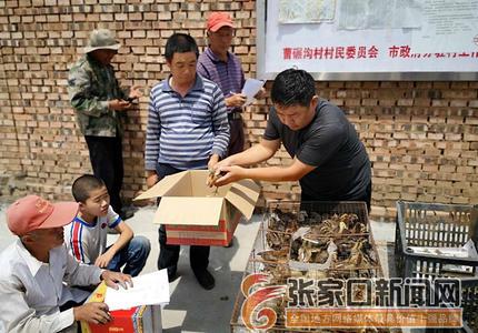 张家口:驻村工作队帮扶贫困户稳定增收