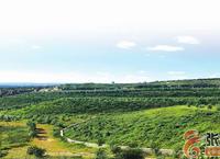 昔日旧矿山 今朝新景观——张家口市自然资源和规划局扎实推进露天矿山环境综合治理