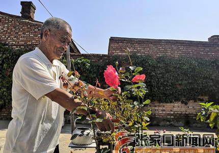 中华传统美德在绿色家庭中闪光
