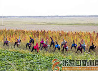 [好日子是干出来的]瑜伽练出农民精气神