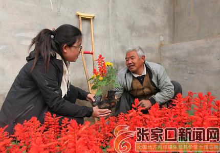 [好日子是干出来的]陈海林:汗水浇开幸福花