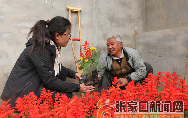 陈海林:汗水浇开幸福花