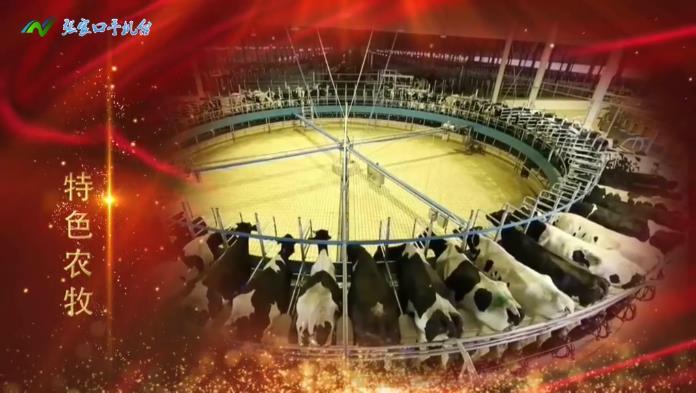 【第八集】特色农牧——张家口发展七大主导产业系列专题片