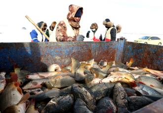 渔猎:沸腾冰雪库伦淖尔湖
