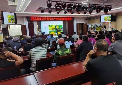 """省""""四个一""""工程—康保哈密瓜产业培训会在张家口市举行"""