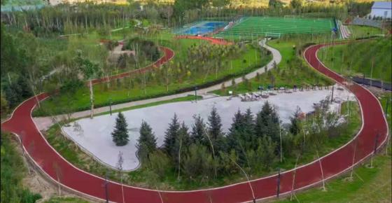 奥运工棚区变身体育公园
